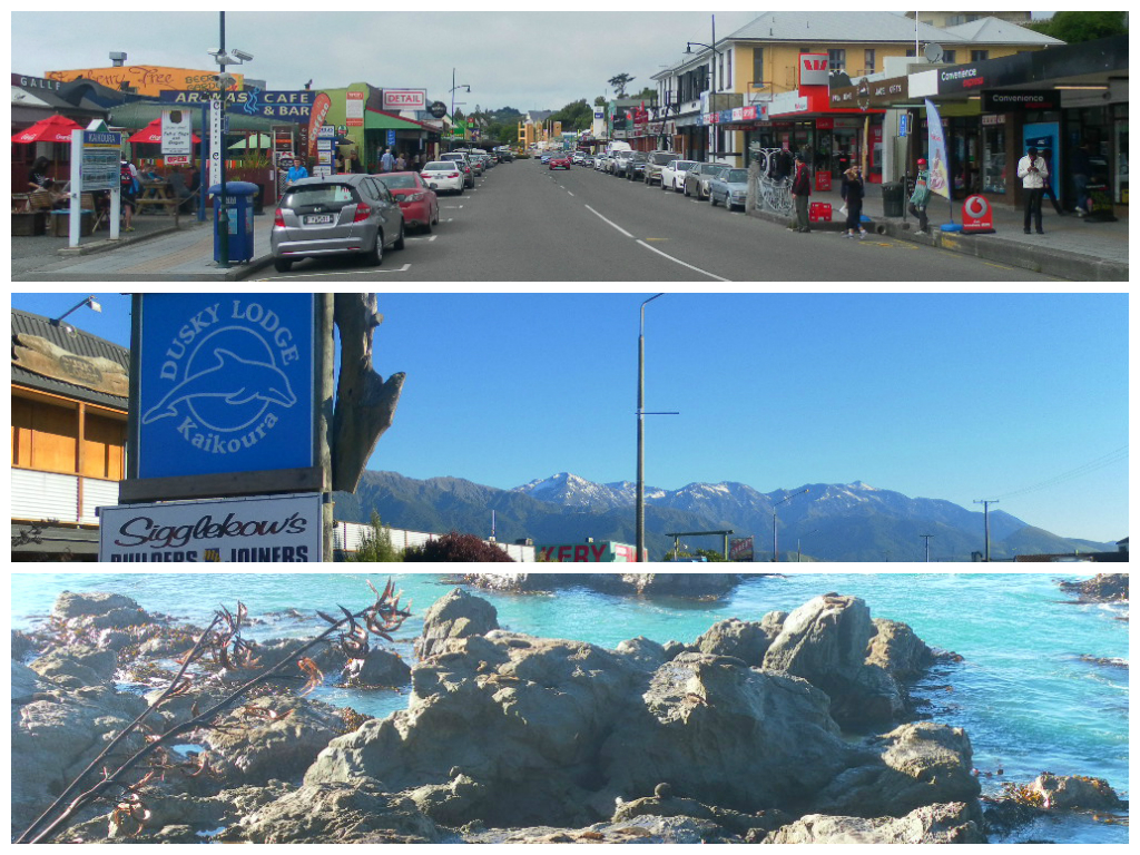 Collage Kaikoura